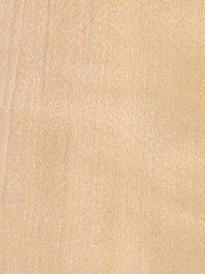 Beech Veneered Panels Winwood Products