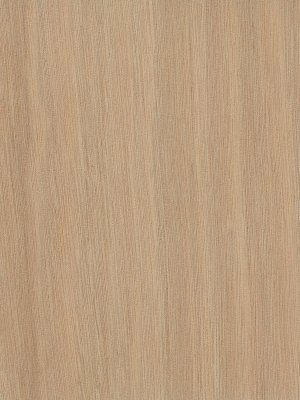 gaboon plywood